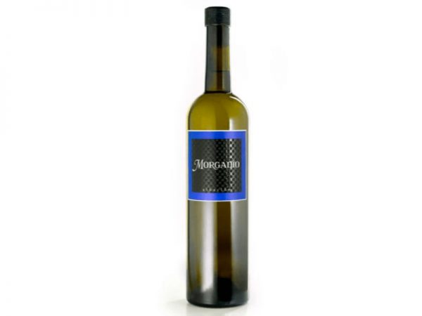 Vino Blanco Albariño Morgadio - Finca Morgadio - 6 Botellas